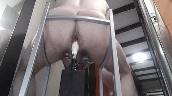 francesca le bearhug Butt plug inch